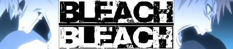 Bleach: The Brink