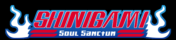 Bleach: Shinigami Soul Sanctum