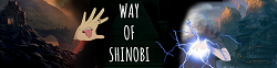 Way of Shinobi