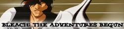 Bleach: The Adventures Begun