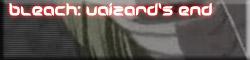 Bleach Vaizard's End