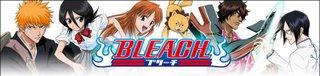 Bleach: Blades Of Fate