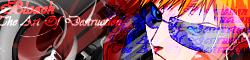 Bleach:The Art of Destruction