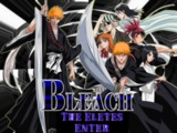Bleach: Enter The Eletes