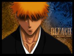 Bleach:Awakening Of  The Vaizards