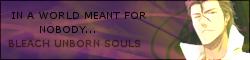 Bleach Unborn Souls