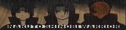 Naruto: Shinobi Warriors