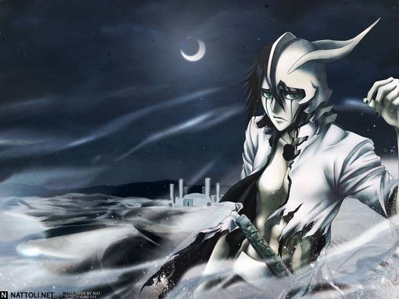 Bleach:Downfall Of The Arrancar