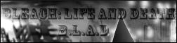 Bleach: Life and Death 2